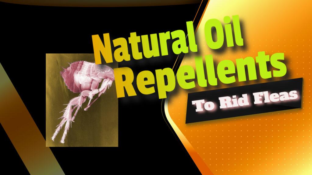 repellents to rid fleas